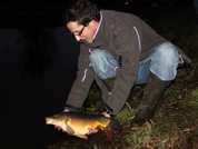 Adding 77 French carps in Januari 2012